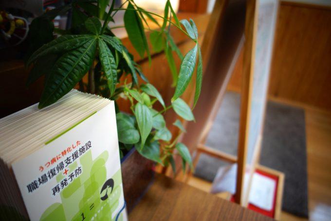 玄関に置かれた観葉植物とパンフレット