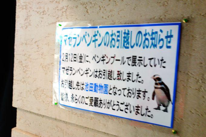 壁に掲示されたペンギンの引っ越しのお知らせチラシ