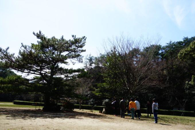 広い広場に植えられた大きな木の前で佇む研修生