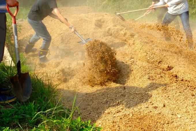 スコップを使い堆肥をならす研修生