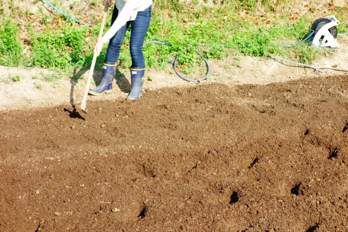 鍬を使い耕す研修生