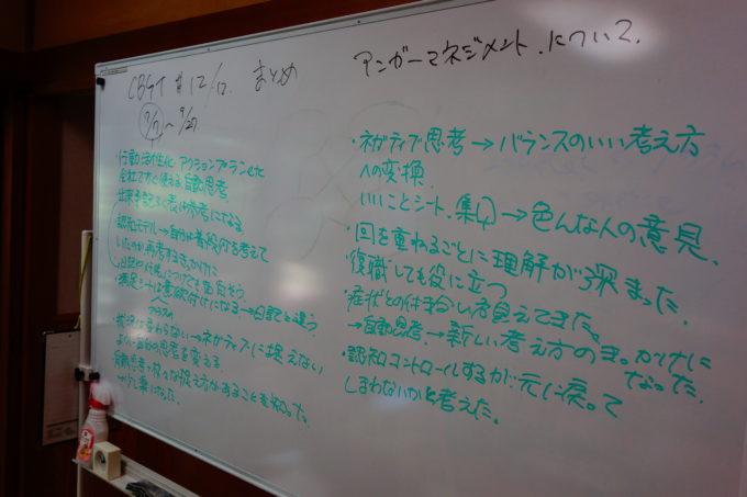 プログラムで出た意見がたくさん書かれたホワイトボード