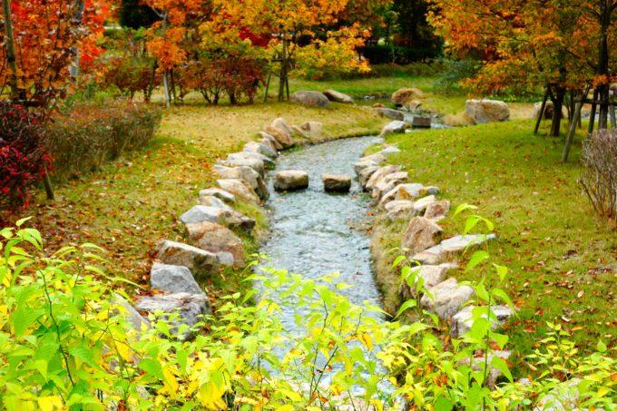 公園内を流れる小川