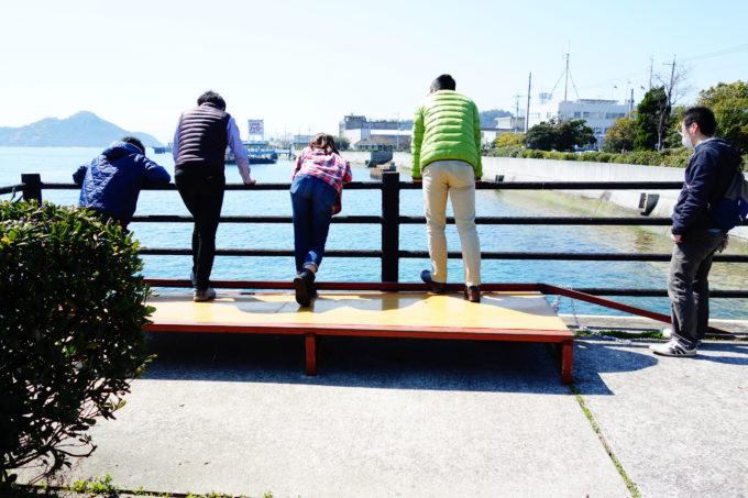 桟橋から海を見る研修生