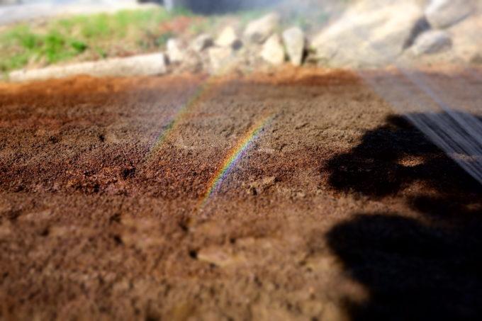 畑にかかる虹