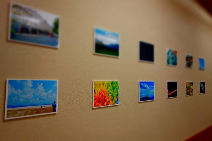 廊下に貼った写真