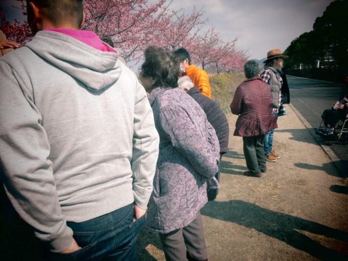 お年寄りと一緒に見る桜