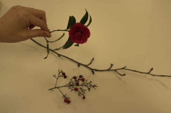 四季折々の花々をたのしみながら