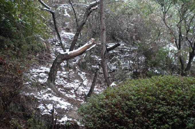 ワークルームより雪景色